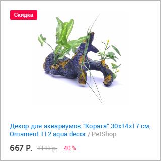 PetShop и Много.ру: декор для аквариумов