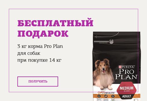 Petshop � �����.��: 3 �� ����� ��� ����� Pro Plan � �������!