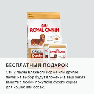 Petshop и Много.ру: бесплатный подарок