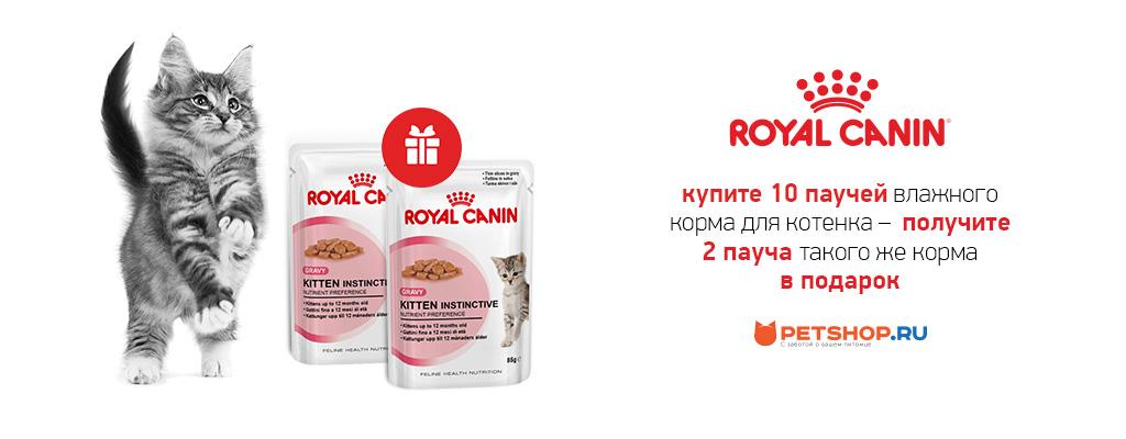 PetShop и Много.ру: 2 пауча корма Royal Canin для котят в подарок!