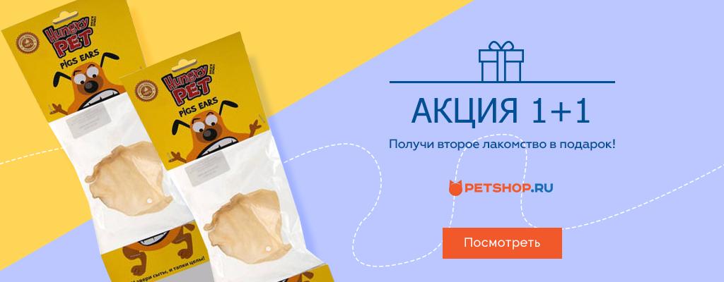 PetShop и Много.ру: второе лакомство Hungry Pet в подарок