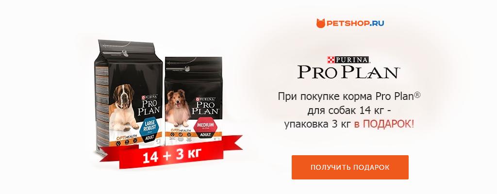 PetShop и Много.ру: 3 кг корма Purina Pro Plan в подарок!