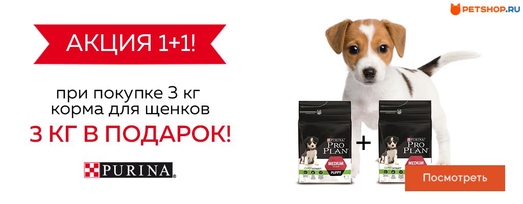 PetShop и Много.ру: 3 кг корма для щенков в подарок