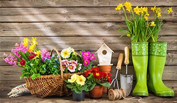 Каталог призов за бонусы: раздел Дом и сад